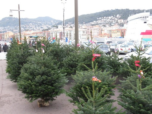 Come smaltire gli alberi di Natale a Nizza e nella Métropole