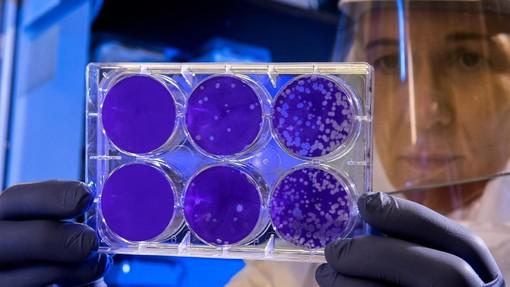 Monaco: 4 nuovi casi per un totale di 31 affetti da Coronavirus