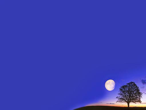 Oroscopo dell'estate: cosa ci indicano le stelle?