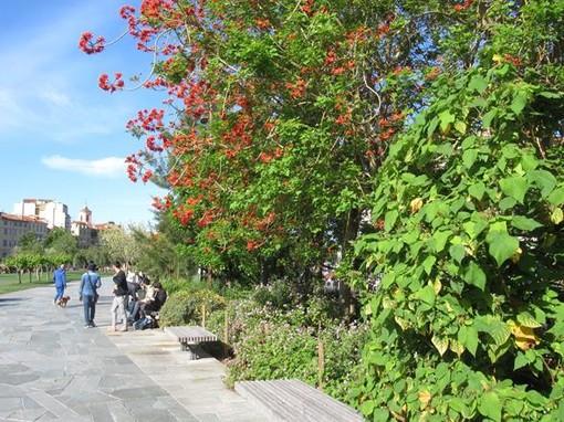 Una passeggiata fra i fiori della Promenade du Paiullon