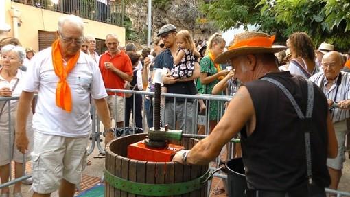 Fêtes des vendanges du Safranier, Antibes