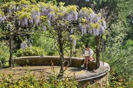 Alla scoperta dei giardini di Menton: tornano le visite guidate