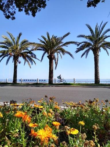 Nizza, luoghi diversi. Foto di Enzo Ragusa