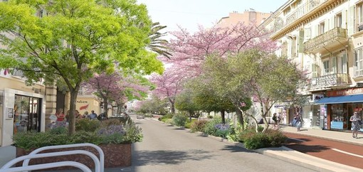 Plan Vélo Rue Dante