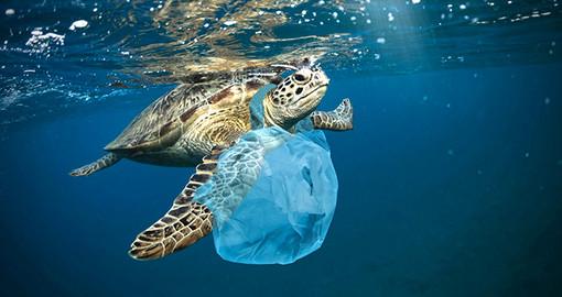 Accordo tra Principato di Monaco, territori della Costa Azzurra e della Corsica per lottare contro l'inquinamento del mare