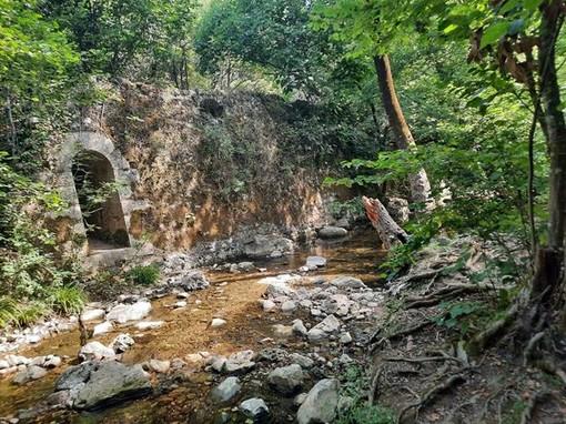 Parc Naturel Départemental de la Brague, fotografie3 di Danilo Radaelli