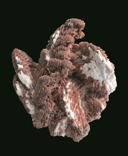 Salon Minéraux, Fossiles, Pierres taillées