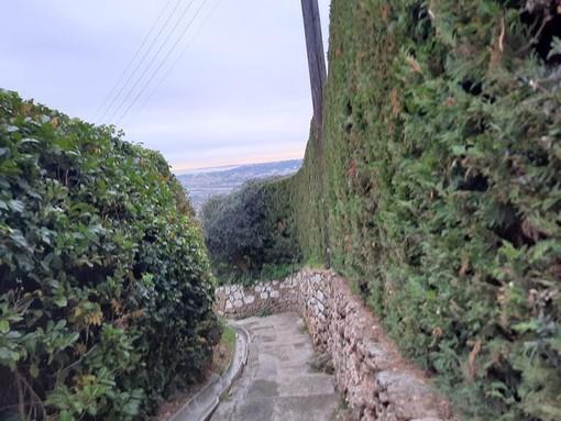 Nizza, il sentiero di Crémat, foto di Danilo Radaelli
