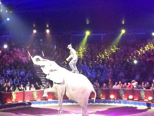 Solo applausi per il 41^ Festival Internazionale del Circo di Montecarlo, adesso spazio alla New Generation, i giovani talenti  (Fotogallery)