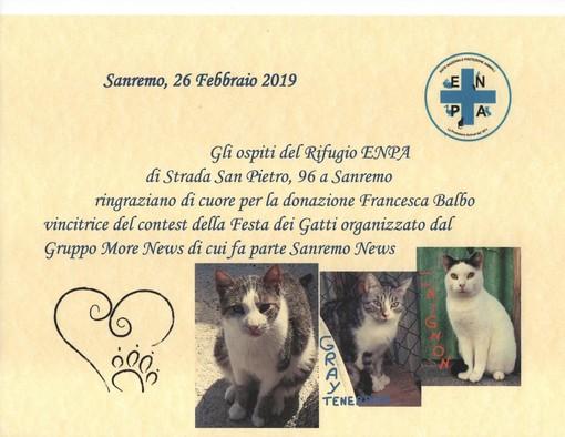 L'Enpa di Sanremo riceve il premio del gruppo Morenews dedicato ai gatti