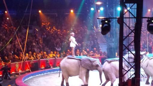 Settima edizione di New Generation: ecco il weekend con i talenti del Circo a Montecarlo