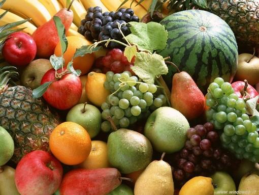 Villeneuve Loubet propone il mercato 100% biologico domenica 18 aprile