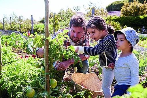 Arrivano gli orti comuni nella Ville de Saint-Raphaël