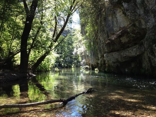 Parc Naturel Urbain des Rives du Loup (sito ufficiale)