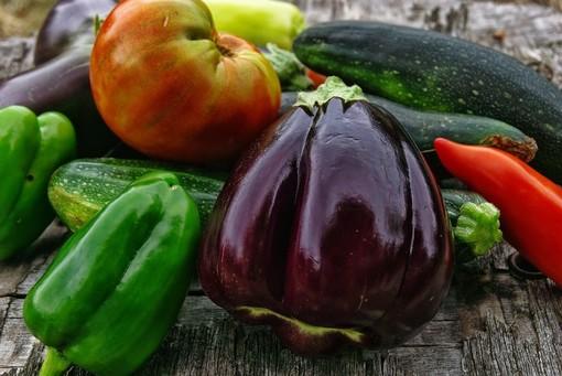 Coltivare un orto domestico: attenzione alle erbe infestanti
