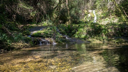 Parc Naturel Départemental de la Brague